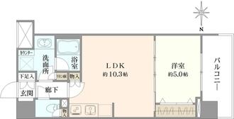 シティインデックス錦糸町の間取図