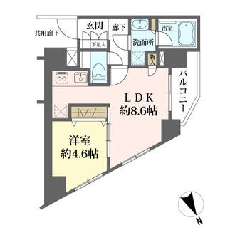 ベルジュール武蔵野中町の間取図