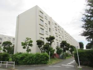 多摩川住宅 ハ-2号棟の外観