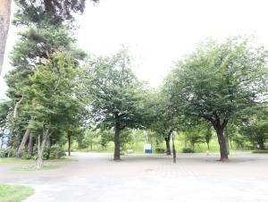 リムテラス井の頭公園の外観
