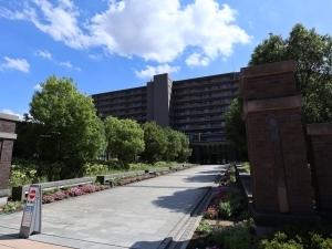 ユニヴェルシオール学園の丘の外観