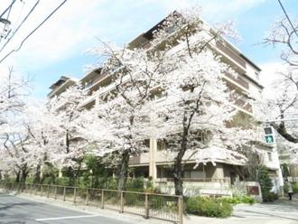 パークシティ武蔵野桜堤 桜景邸の外観
