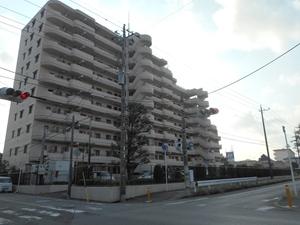 モアステージ松戸六高台デルニエの外観