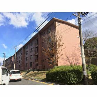 鍋屋上野住宅9号棟の外観