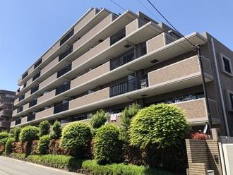 コスモ川口戸塚けやき通りの外観