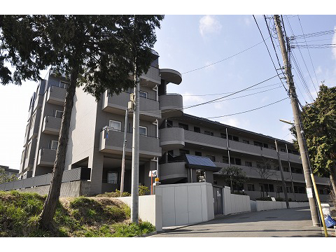 梶ヶ谷パインマンション