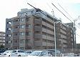 ライオンズマンション大江川緑地-0-1