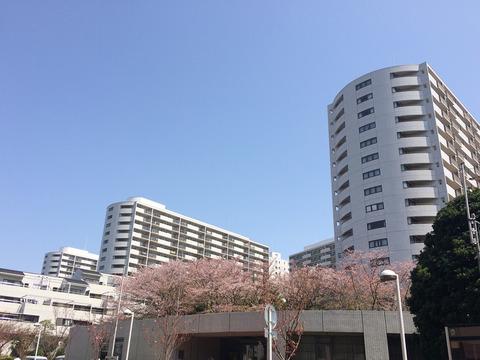 ニューシティ東戸塚パークヒルズ