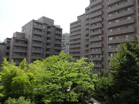 パークハウス多摩川-0-8