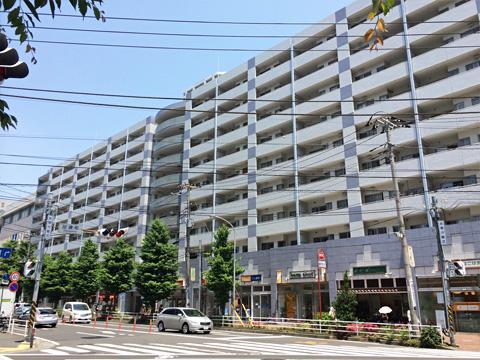 ニューシティ東戸塚パークハウス南の街-0-1