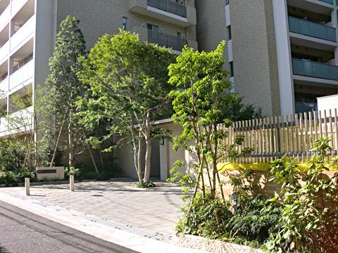 ザ・パークハウス大宮氷川参道-0-1