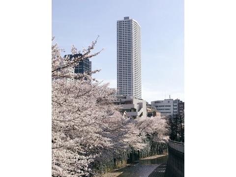 ザ・パークハウス西新宿タワー60-0-1